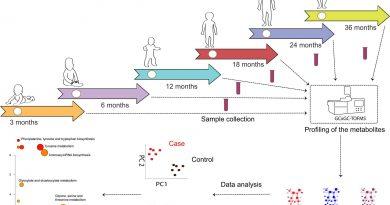 Zirkulierende Moleküle im Blut Sprungbrett für die frühe Vorhersage von Typ-1-diabetes