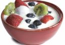 Die Vorteile Der Zugabe Von Probiotika In Ihrer Täglichen Ernährung