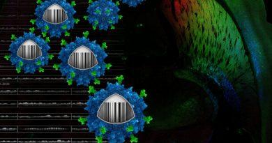 High-tech-Methode zur eindeutigen gezielte gen-Therapie