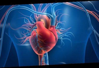Herzschwäche: Neuer Wirkstoff gegen chronische Herzinsuffizienz – Heilpraxis